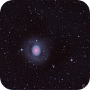 Messier 94 - Croc's Eye,                                jolind