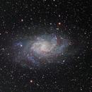 M33 - Triangulum,                                Fredd