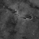 Elephant's Trunk Nebula,                                Javier