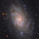 M33 Triangulum galaxy,                                Byoungjun Jeong