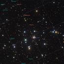 """The Beehive Cluster (also known as Praesepe (Latin for """"manger"""")),                                Andre van Zegveld"""
