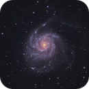 M101 from Negev Desert, a closeup,                                Leo Shatz