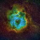 Rosette Nebula - SHO,                                Tareq Abdulla
