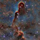 Trunk Nebula (Vdb142),                                Andrea Ferri
