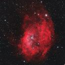 Lowers Nebula  Sh2-261,                                Bernd Steiner
