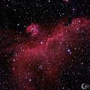 IC2177 Seagull Nebula,                                Mark Forteath