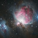 Orion Nebula,                                Adam Landefeld