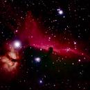 Horsehead and Flame Nebula,                                Kapil K.