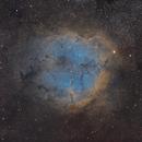 IC1396 Hybrid,                                Minseok.Chang