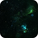 NGC2035, NGC2014 and NGC2020 in Narrowband,                                alistairsam