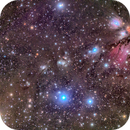 NGC 2170 and Its Vicinity from DSW,                                Miles Zhou