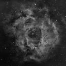 Rosette Nebula in H-Alpha,                                Danny Garnett