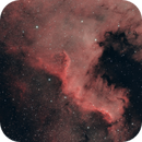 North Americian and Pellican Nebula,                                Terry Adrian