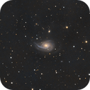 NGC 772.  Arp 78 LRGB more galaxies than stars in Aries.,                                Pat Rodgers