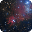 NGC 2264 The Cone from Deep Sky West,                                jerryyyyy