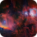 Colored version of my 9 pannels mosaic for the Orion Challenge,                                David Lindemann