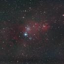 NGC 2264 - Nebulosa Cono,                                GALASSIA 60