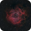 The Rosette nebula, from home,                                Francesco Meschia