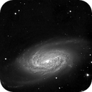 NGC 2903,                                Günther Eder