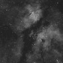 IC 1318,                                Robert de Groot