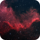 NGC7000,                                woddy