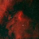IC 5070 Pelican Nebula,                                PSugg