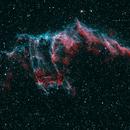 NGC6995.  The Flying Bat,                                  Carl Weber