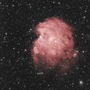 Monkey Head Nebula,                                Chris Kagy