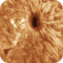 Day 2: CLose-up of an Active Sunspot (Animation),                                  Chuck's Astrophot...