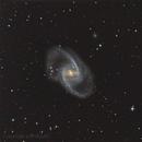 galassia Ngc1365 nella costellazione della Fornace,                                Rolando Ligustri