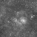 M8 in infraRed light,                    Ray Heinle
