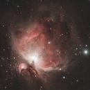 M42 - The Orion Nebula,                                Marvin Wrobel