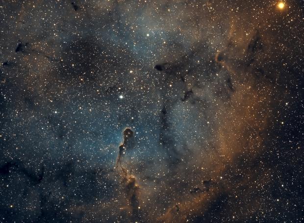 IC 1396 Elephant Trunk Nebula - Esprit 80 - ASI1600MM Wide Field,                                Rowland Archer