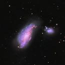 NGC4490 - ARP 269 LRGB - The Cocoon Galaxy,                                andrea tasselli