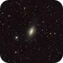 NGC 3521 the bubble galaxy,                                Riedl Rudolf