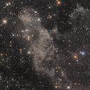 LBN 406, The Laughing Skull Nebula,                                Steed Yu
