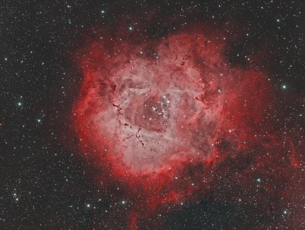 Caldwell 49 Rosette Nebula HOO,                                Kyle Desrosier