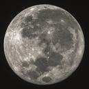 Luna piena,                                boxfox