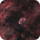 Crescent Nebula wide field,                                Israel Gil Andani