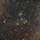 LDN 1235 Shark nebula,                                John