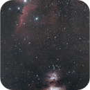 Orion nebula to Horsehead nebula,                                Geert Vandenbulcke