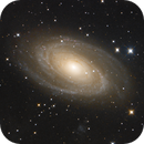 M 81, Bodes Galaxie,                                Martin Luther