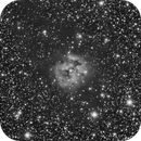 IC5146 (The Cocoon Nebula),                                dnault42