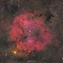 IC 1396,                                Alexander Grasel