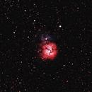 Trifid Nebula - M20,                                PINCELLA Claudio