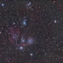 NGC 2170 - QHY600 - Esprit 150 - LRGB,                                Eric Walden