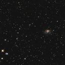 NGC1961,                                Stéphan & Fils