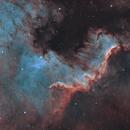 NGC 7000 Cygnus Wall 20210531 9600s HOO 03.5.3,                                Allan Alaoui