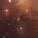 Rho Ophiuchus Complex,                                Geoff Scott