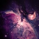 Orion 2,                                Jamie